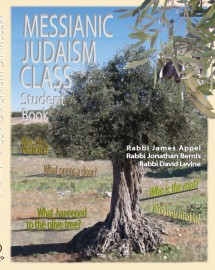 Messianic Judaism Class, Student Book