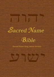 Sacred Name Bible, YHVH & Yeshua in Hebrew, KJV, print book