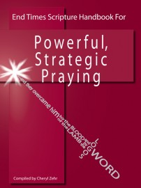 Endtimes Scripture Handbook for Powerful, Strategic Praying